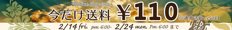 送料110円
